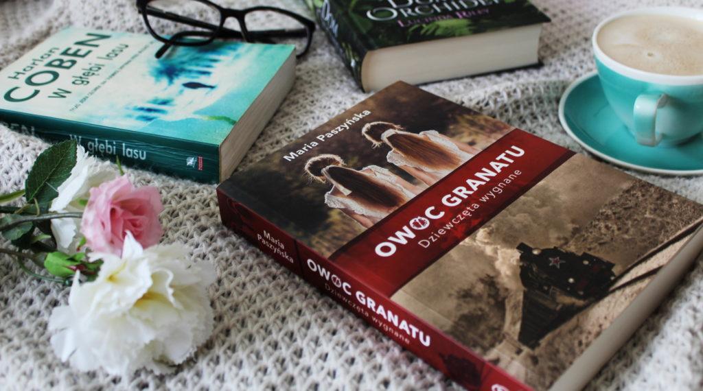 IMG 4132 1024x570 E book czy tradycyjna książka? Moja opinia